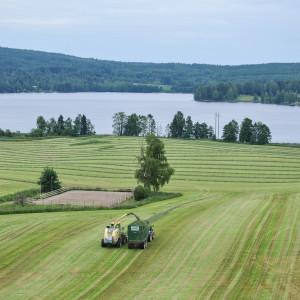 Sälboda Gård – Tröska, sommar, sjö