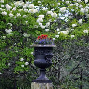 Sälboda Herrgård – Blommor i urna